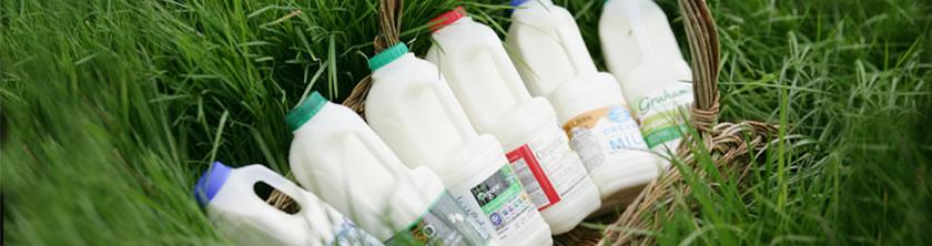 C 28 июля Россия ограничивает ввоз молочной продукции из Украины